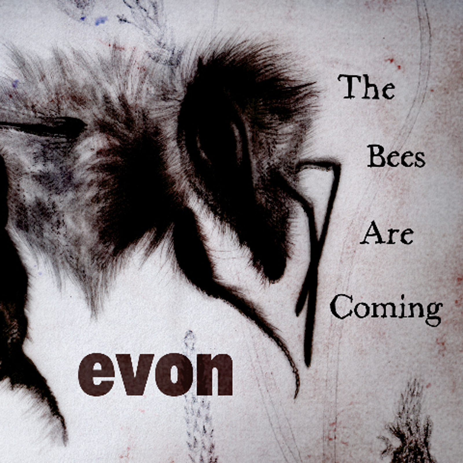 Evon - The Bees Are Coming