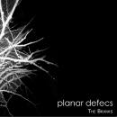 Planar Defecs - The Branks